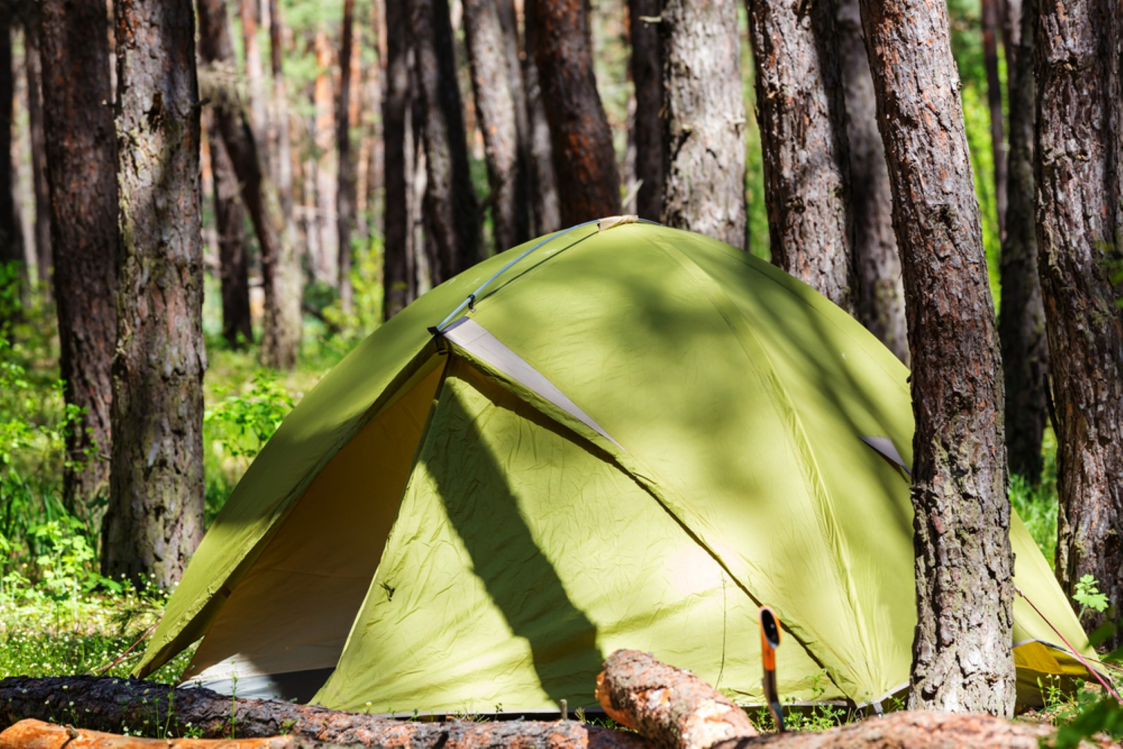 are coleman good tents